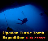PADI Cavern course and cave diving expeditions to the Turtle Tomb