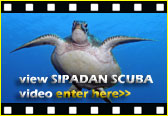 View the Sipadan Scuba video